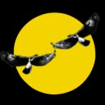 beaverlac logo