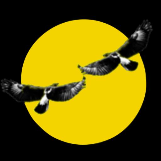 https://www.beaverlac.co.za/wp-content/uploads/2020/10/cropped-beaverlac-logo.png